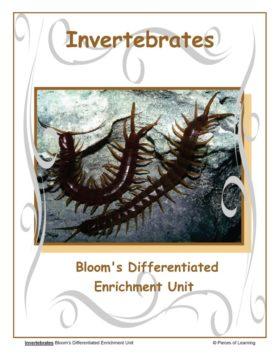 Invertebrates Unit